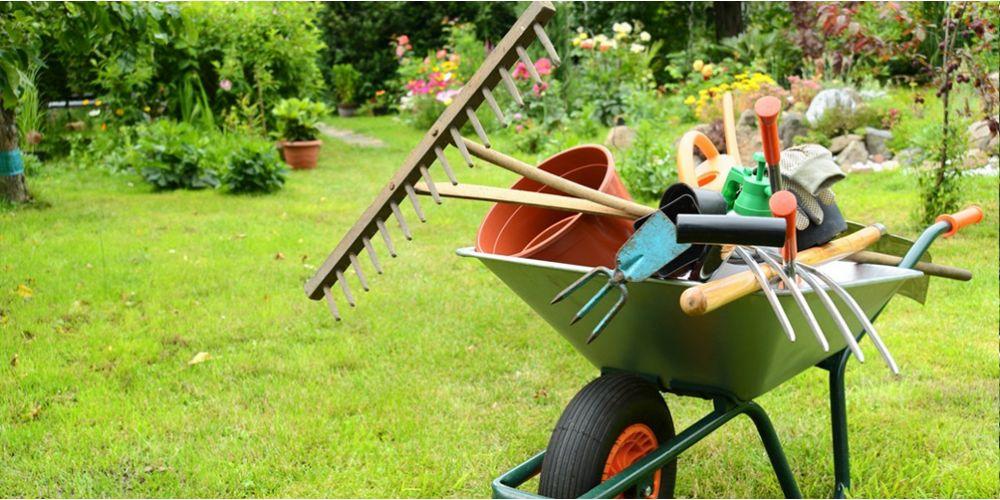 Календарь работ в саду, цветнике и огороде на апрель-май